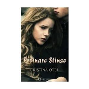 Felinare stinse - Cristina Otel imagine