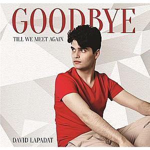 Goodbye Till We Meet Again | David Lapadat imagine