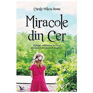 Miracole din cer   Christy Wilson Beam imagine