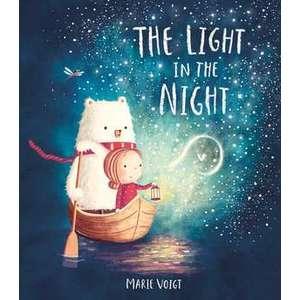 Light in the Night imagine