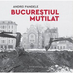 Bucurestiul mutilat   Andrei Pandele imagine