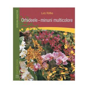 Orhideele – minuni multicolore imagine