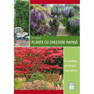 Plante cu creștere rapidă - în grădină, pe terasă sau balcon imagine