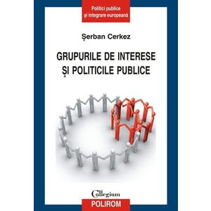Grupurile de interese si politicile publice imagine