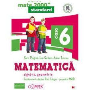 Matematica. Algebra, geometrie. Clasa a VI-a imagine