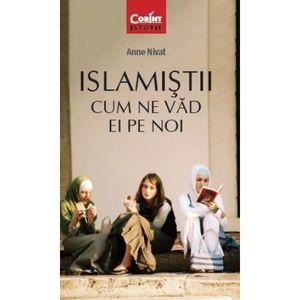Islamistii. Cum ne vad ei pe noi imagine