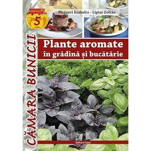 Plante aromatice in gradina si bucatarie imagine