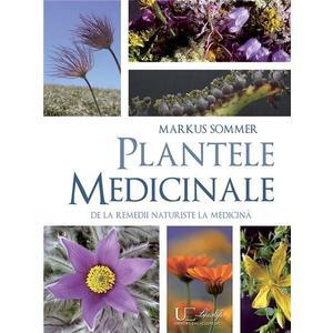 Plante medicinale De la remedii naturiste la medicina imagine