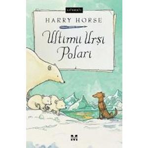 Ultimii ursi polari imagine
