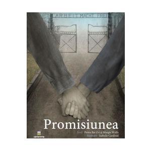 Promisiunea imagine
