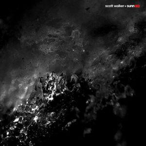 Soused | Scott Walker imagine