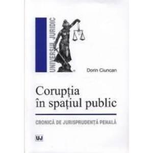Coruptia in spatiul public - Dorin Ciuncan imagine