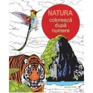 Natura - coloreaza dupa numere imagine