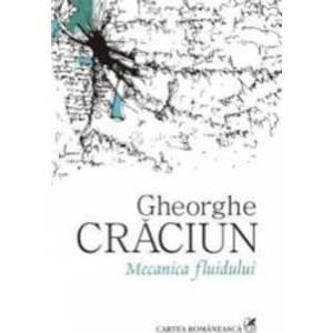 Mecanica Fluidului - Gheorghe Craciun imagine