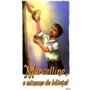 Marcelinno. O minune de baietel - Constantin Necula imagine