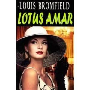Bromfield Louis imagine