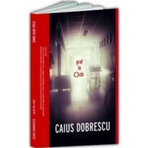 Praf in ochi - Caius Dobrescu imagine