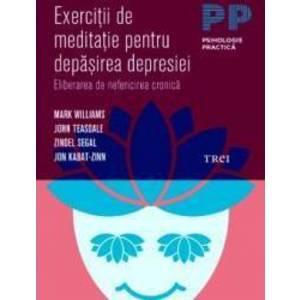 Exercitii de meditatie pentru depasirea depresiei | Mark Williams imagine