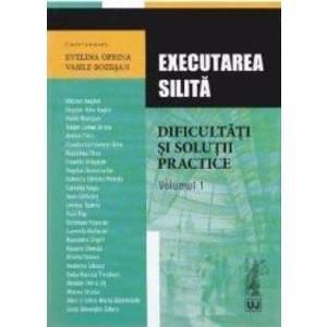 Executarea silita. Dificultati si solutii practice vol.1 - Evelina Oprina Vasile Bozesan imagine