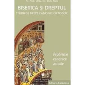 Biserica si dreptul. Vol. 5 Probleme canonice actuale - Liviu Stan imagine