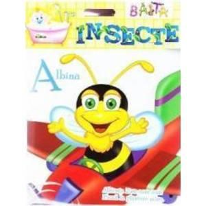 Baita - Insecte imagine