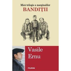 Banditii | Vasile Ernu imagine
