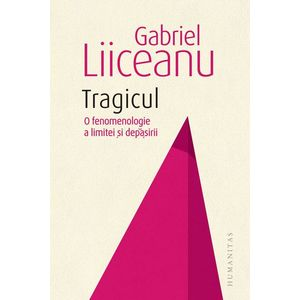 Tragicul | Gabriel Liiceanu imagine