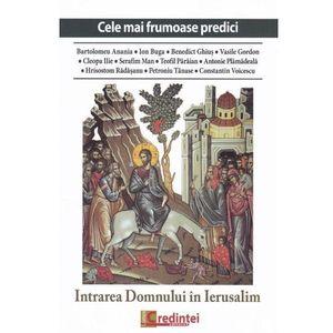Intrarea Domnului in Ierusalim | imagine