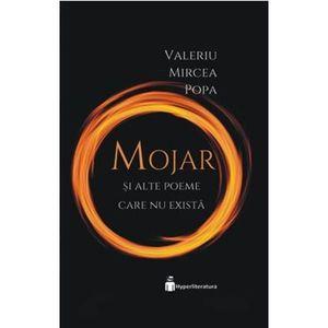 Valeriu Mircea Popa imagine