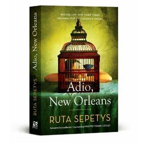 Adio, New Orleans imagine