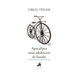 Virgil Tanase imagine
