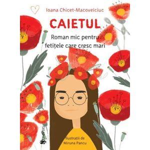 Caietul, roman mic pentru fetitele care cresc mari | Ioana Chicet-Macoveiciuc imagine