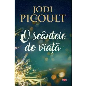 Jodi Picoult imagine