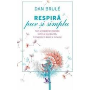 Dan Brule imagine