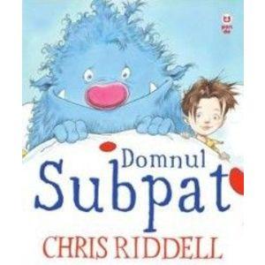 Domnul Subpat - Chris Riddell imagine