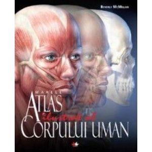 Marele atlas ilustrat al corpului uman - Beverly McMillan imagine