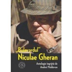 Niculae Gheran imagine