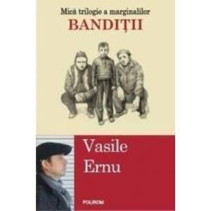 Banditii - Vasile Ernu imagine
