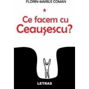 Florin-Marius Coman imagine