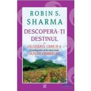 Robin Sharma imagine