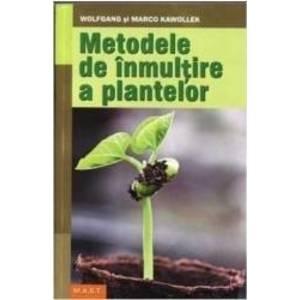 Metode de inmultire a plantelor imagine