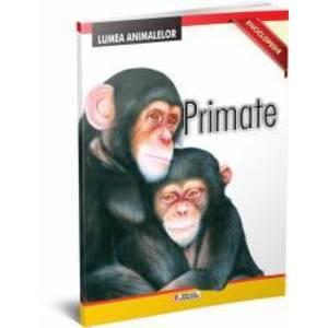 Primate. Enciclopedie imagine