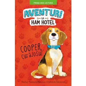 Aventuri La Ham Hotel imagine
