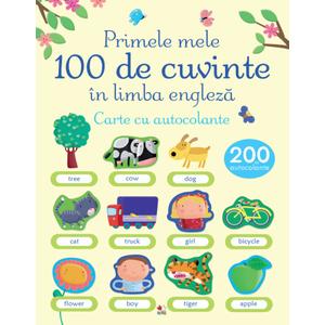 Primele mele 100 de cuvinte în limba engleză. Carte cu autocolante imagine