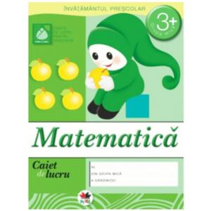 Matematică. Caiet de lucru 3+ imagine